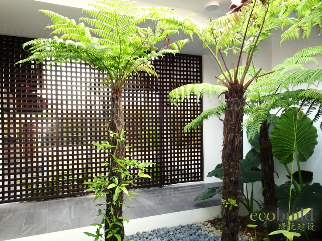 Modern Tropical Bungalow
